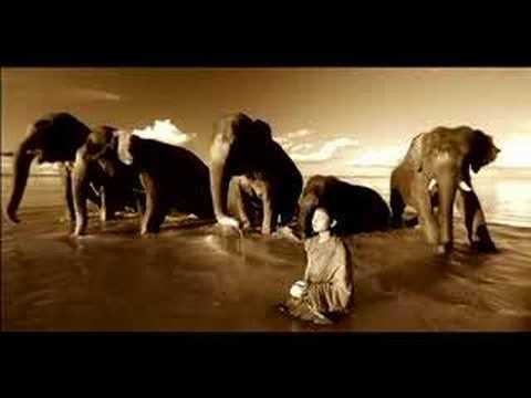 Flying Elephants Presents Part 2