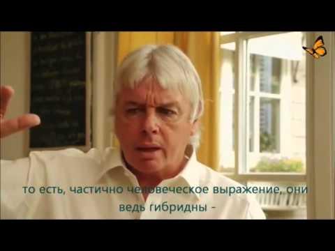 Интервью Джо Конрада с Дэвидом Айком для Bewusst.TV 18.06.2012 г
