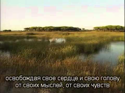 2012 06 16 Мария. Напутствие