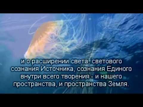 2012.12.29 Новая Земля
