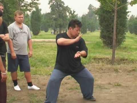 Master Chen Yu - Tui Shou Applications / Мастер Чэнь Юй - Туйшоу