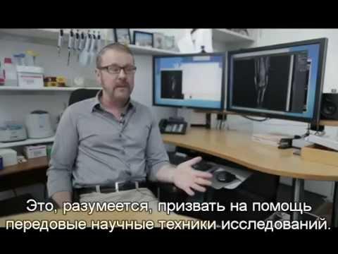 Сириус 2013 с русскими субтитрами документальный Sirius
