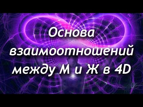 Основа взаимоотношений между М и Ж в 4D