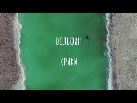 """Дельфин - Крики (Премьера 2017) Время """"танцулек"""" по выходным и это - не танцульки но дань обычаю"""