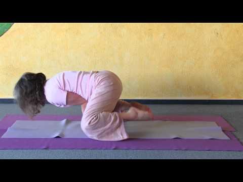 Variations of Mayurasana, Yoga Peacock