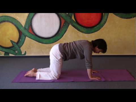 Relax your Back - Dynamic Majariasana Yoga Cat Pose