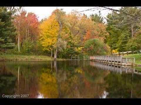 """""""When Fall Comes to New England"""""""