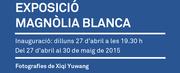 """Exposición fotográfica """"Magnolia blanca"""""""