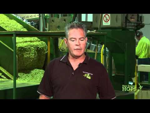 Pure New Zealand Hops - Process