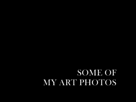 ART PHOTOS VIDEO