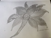 pencle sketch with flower