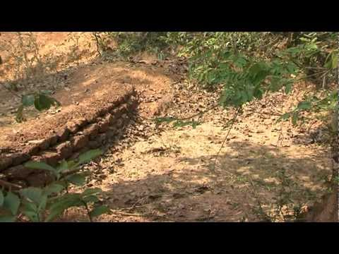 a SUSANTA BISWAS documentary -- Towards A Green Future
