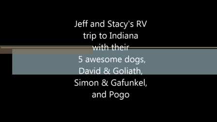 RV trip to Indiana with the dogs-2
