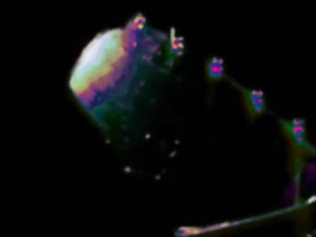 Hawkwind - Space is deep