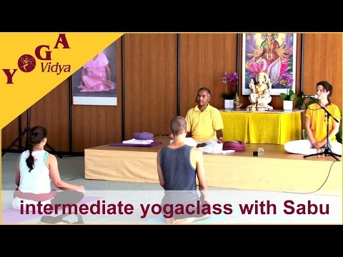 Intermediate-level Yoga Class with Sabu – Sivananda Yoga
