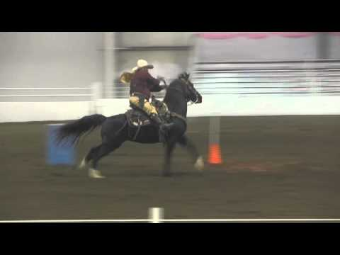 Cowboy Mounted Shooters