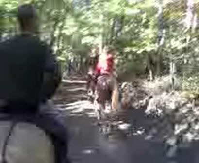 Rabbit Creek Trail 2..2010