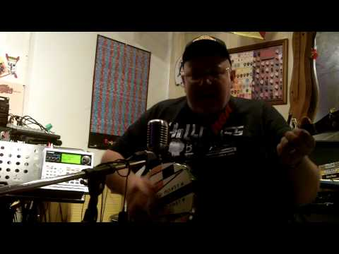 I Wanta be Sedated Ramones cover: by Ice Bob
