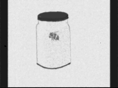 BEE IN A JAR.