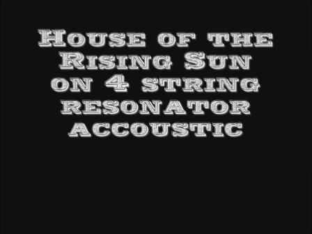 House of The Rising Sun - Accoustic 4-string Reso