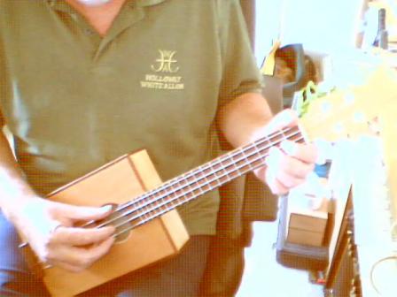 4 String Tenor Uke
