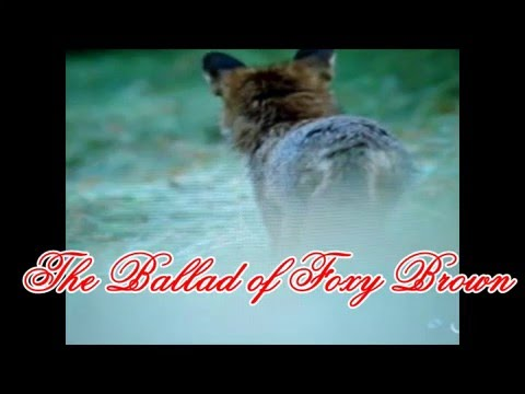 The Ballad of Foxy Brown (new version)