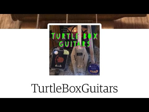 Turtle Box Guitars Etsy Shop Ad