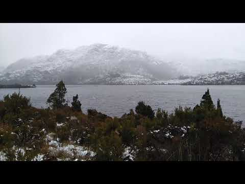 Cold Cradle Mountain with Bonesy