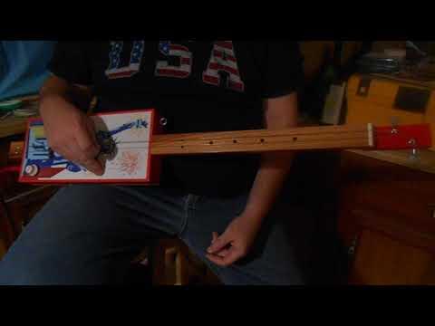 liberty 2 string fretless guitar