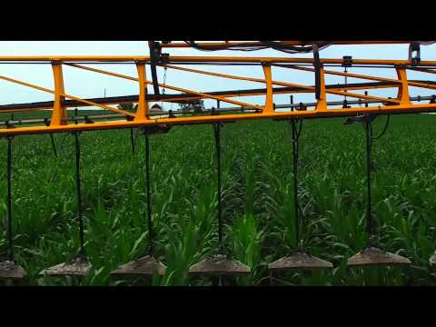 FEEDING CORN IN IOWA [2160p 4K]  (please read description below)