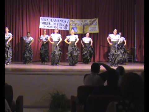 Actuación fin de curso 2009/2010 en la Casa de Cultura de LOGROSÁN.