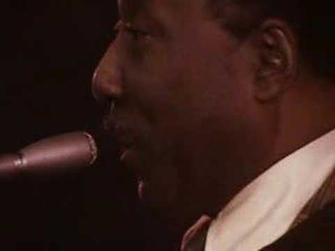 "Muddy Waters plays ""Manish Boy"""