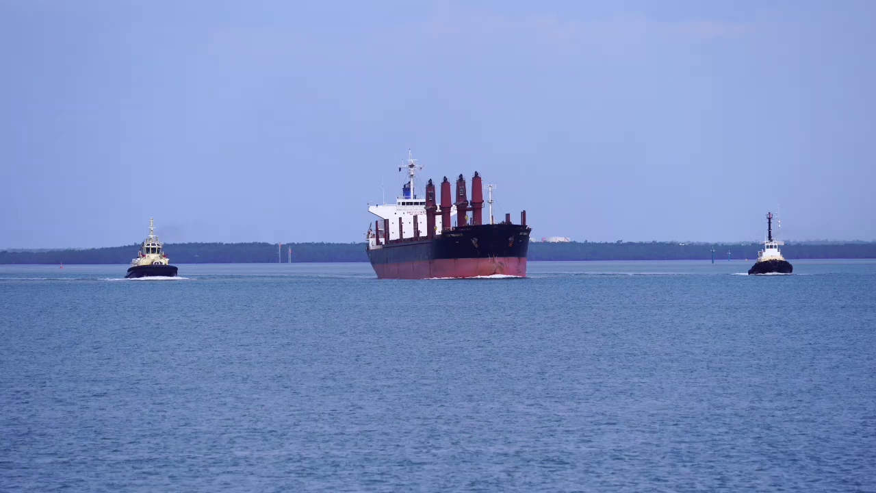Sen Treasure IMO 9634907 Bulk Carrier DWN-AU