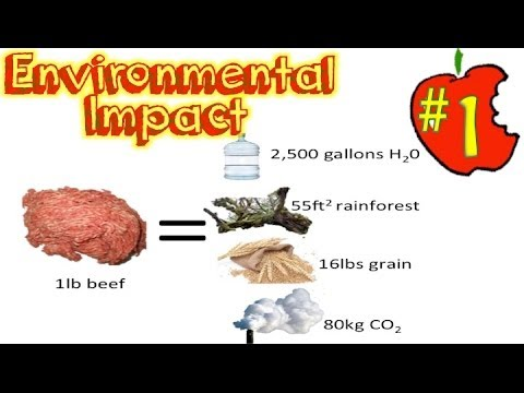 Save the Environment with Your Diet!