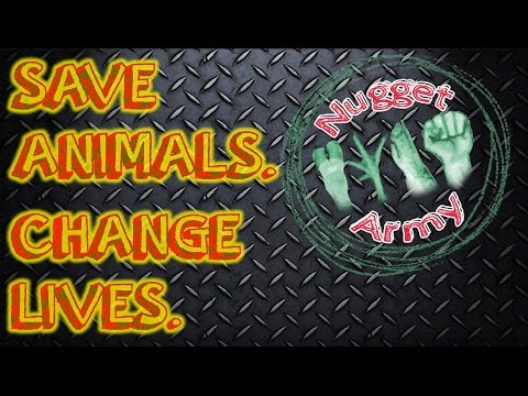 Save Animals, Change Lives, Join the Nugget Army!