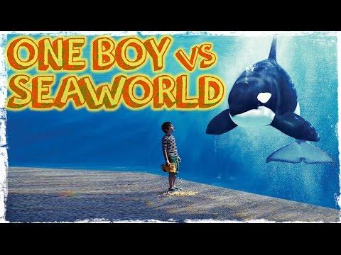 One 12 Year Old Boy Versus SeaWorld & Circuses