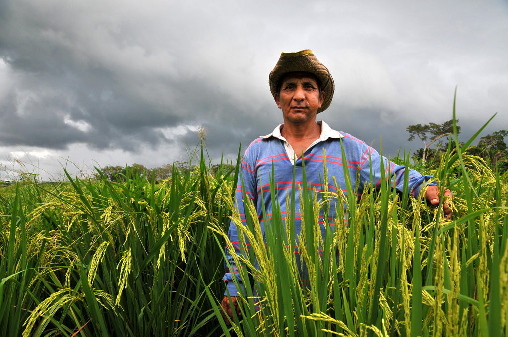 BOLIVIA TO BE COMPLETELY FOOD INDEPENDENT IN 2020 BY INVESTING IN SMALL FARMERS