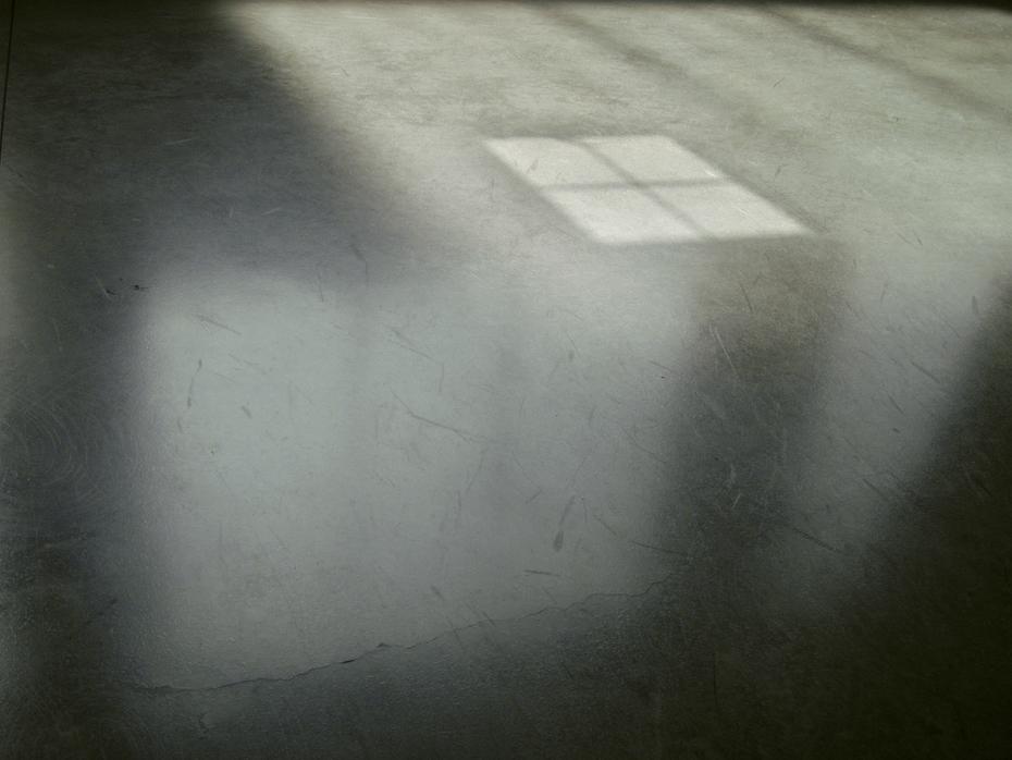 Untitled (shadow 5170083)