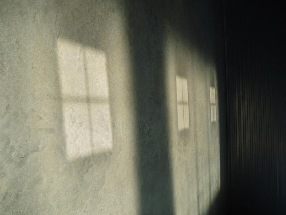 Untitled (shadow 5170070)