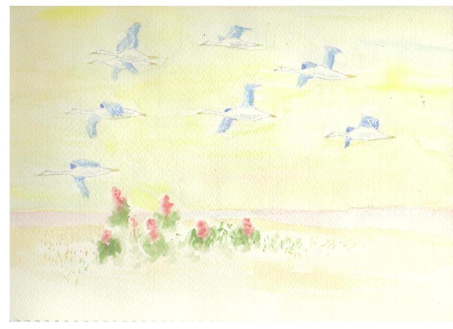 timetoleavebirds