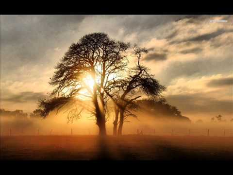 Schiller & Kate Havnevik - Hallucinating Beauty (Sonne Album)