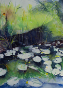 Lilies in Pond 10in. x 14in.