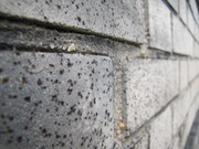 STRINGFELLOW-brick wall1