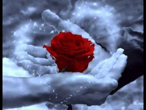 Mensagem Reflexão: Hoje Posso Escolher - A Luz do Espiritismo.