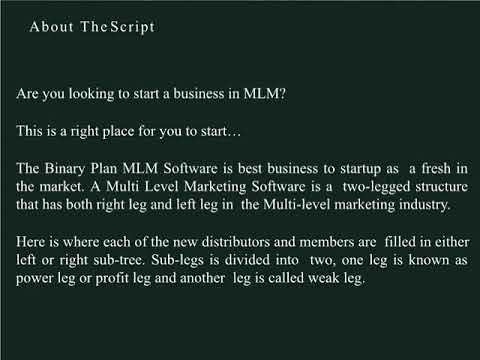 Binary Plan MLM Software | Web based Binary MLM Script
