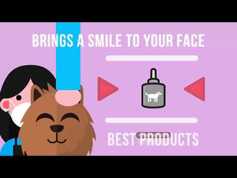 The Best Dog Grooming in Canberra | Call 02 6190 7918