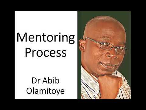 Abib Olamitoye on Mentoring