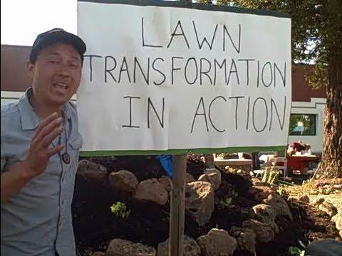 Doctors Transform Lawn into Edible Garden to Reverse the Diabetes Epidemic