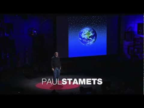 6 Ways MUSHROOMS Can SAVE the WORLD - Paul Stamets - TED awards -Talk, Lecture, Documentary