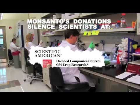 Operation:  Monsanto Stock Plunge and Panic
